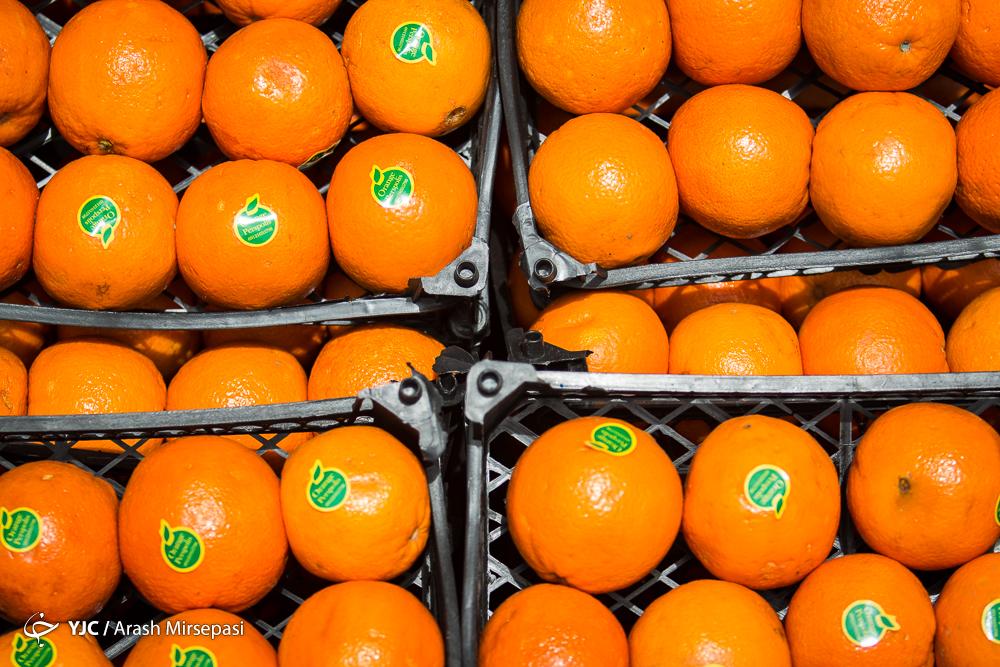 پای میوه های لوکس به بازار میوه شب عید می رسد/کمبودی در ذخیره سازی میوه شب عید وجود ندارد/گرانی به بازار میوه شب عید میرسد؟