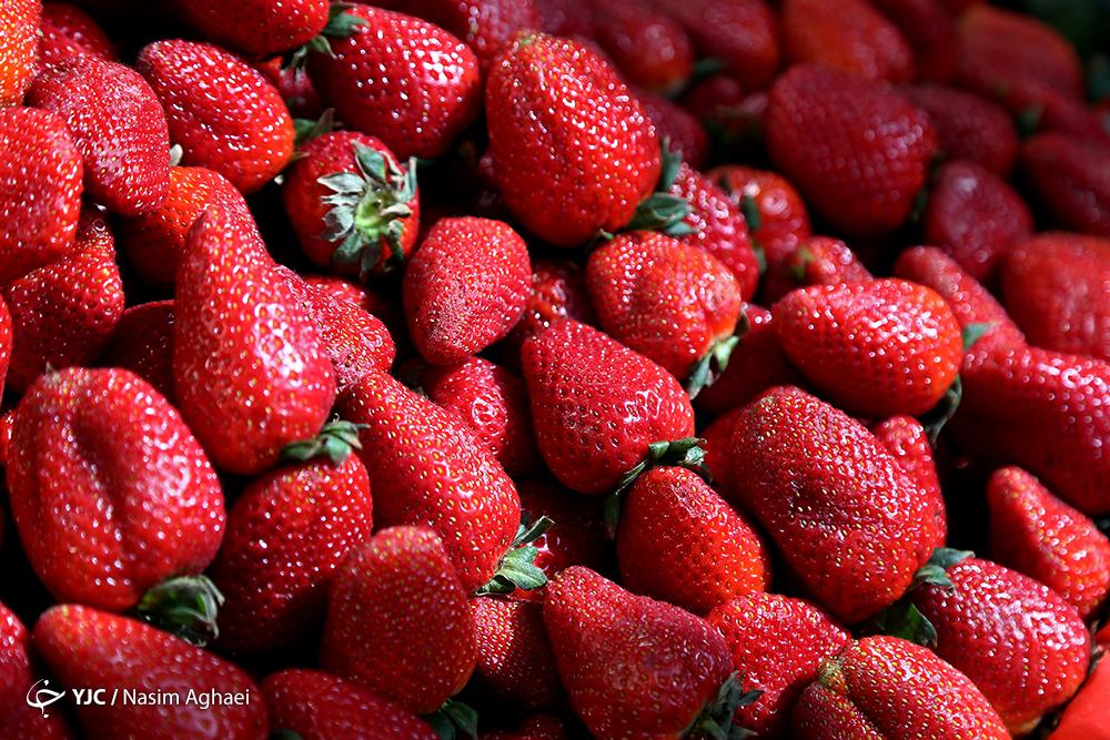 نحوه عرضه میوه شب عید امسال اعلام شد / پای میوههای لوکس به هفت سین ۹۹ باز میشود!
