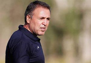نظرات کارشناسان درباره انتخاب اسکوچیچ به عنوان سرمربی تیم ملی فوتبال