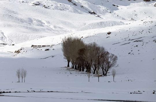 خودنمایی جاذبههای زمستانه در بام ایران