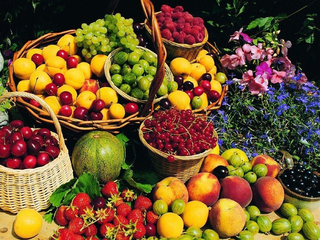 اثرات میوه بر بدن