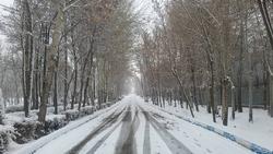احتمال بارشهای پراکنده همراه با کولاک در زنجان