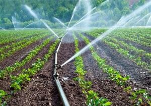 بهره برداری از طرح آبیاری تحت فشار امیرآباد کیار