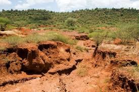 ۱۷ درصد از فرسایش خاک کشور در فارس