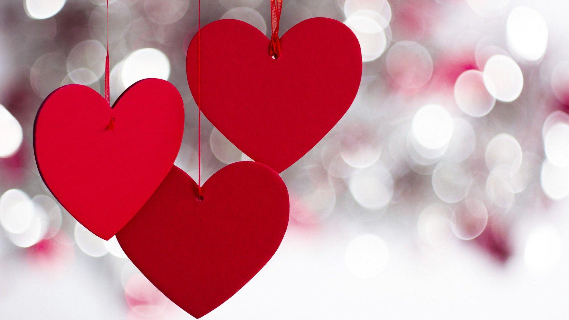 ولنتاین؛ روز ماموریت خرس قرمز از سوی غرب برای تاراج سنت اصیل ایرانی/ سرانجام روابط نامتعارف پشت در باغ سبزی مزین به قلب و رز سرخ!