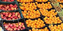 هزار و ۷۰۰ تن میوه شب عید در استان زنجان ذخیره شده است