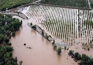 خسارت ۷ میلیارد تومانی سیل به بخش کشاورزی میناب