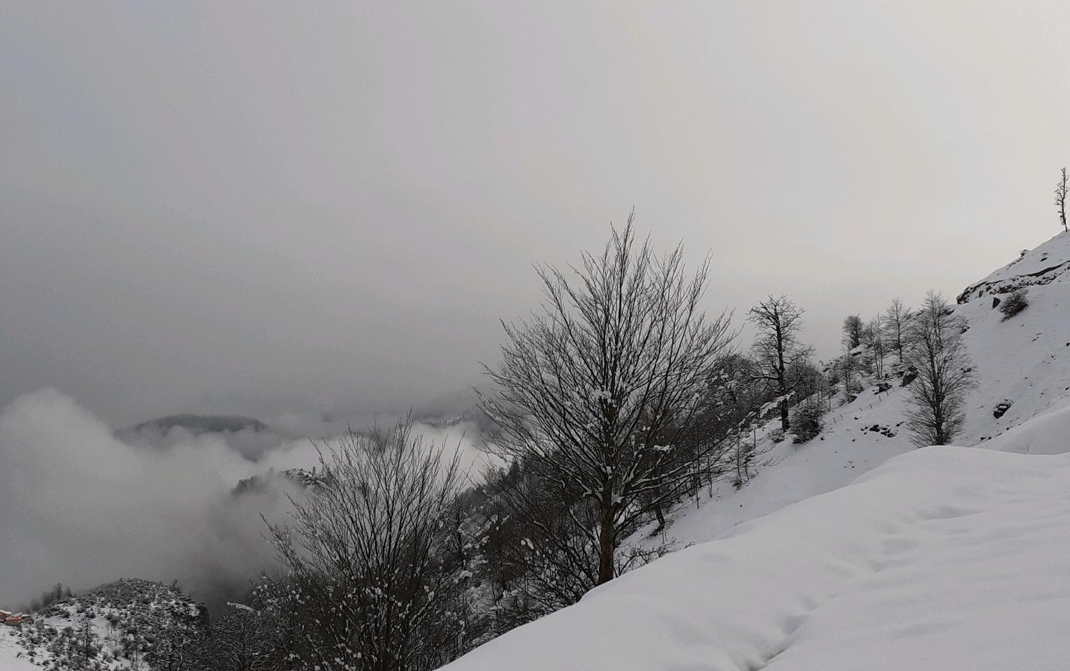 بارش برف همچنان در کوهستانهای گیلان