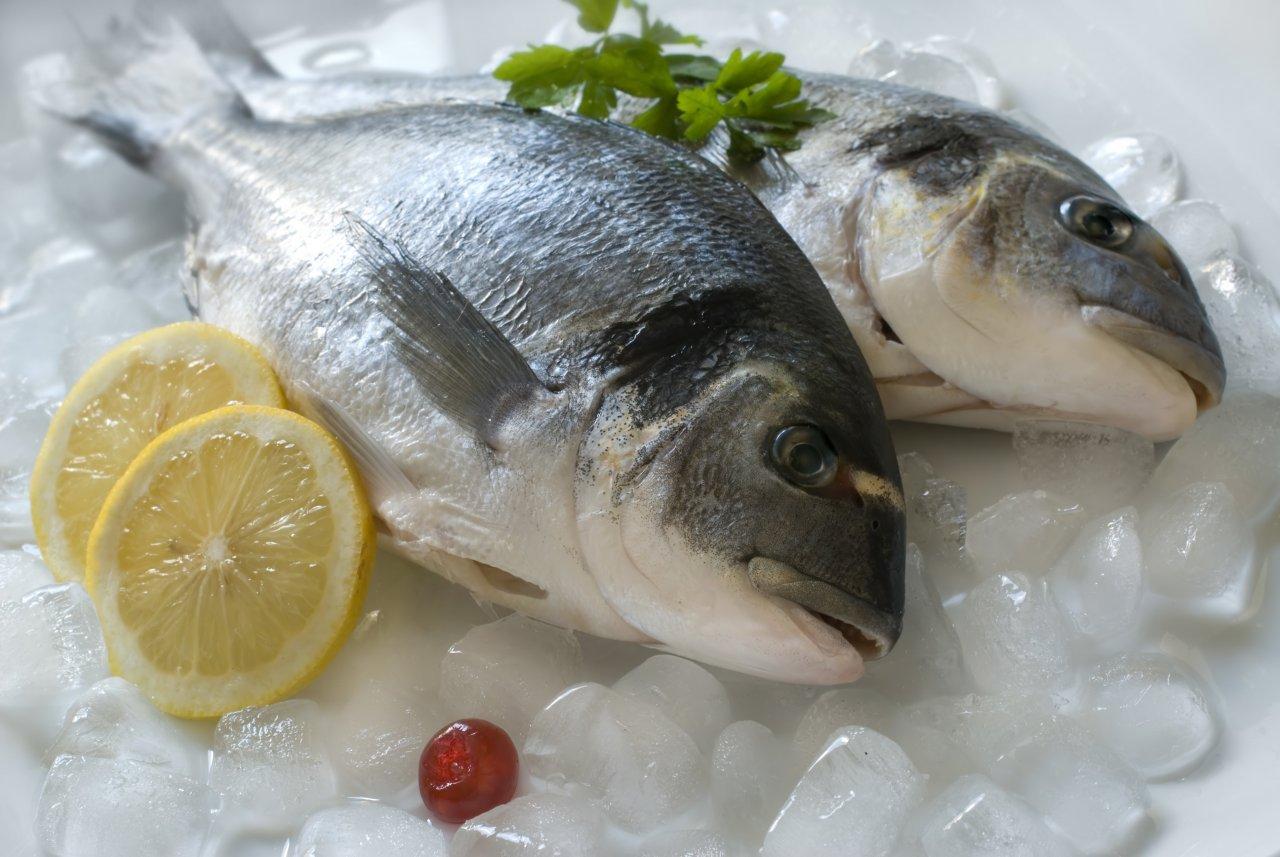 انواع ماهی منجمد  را در آستانه سال نو چند بخریم؟