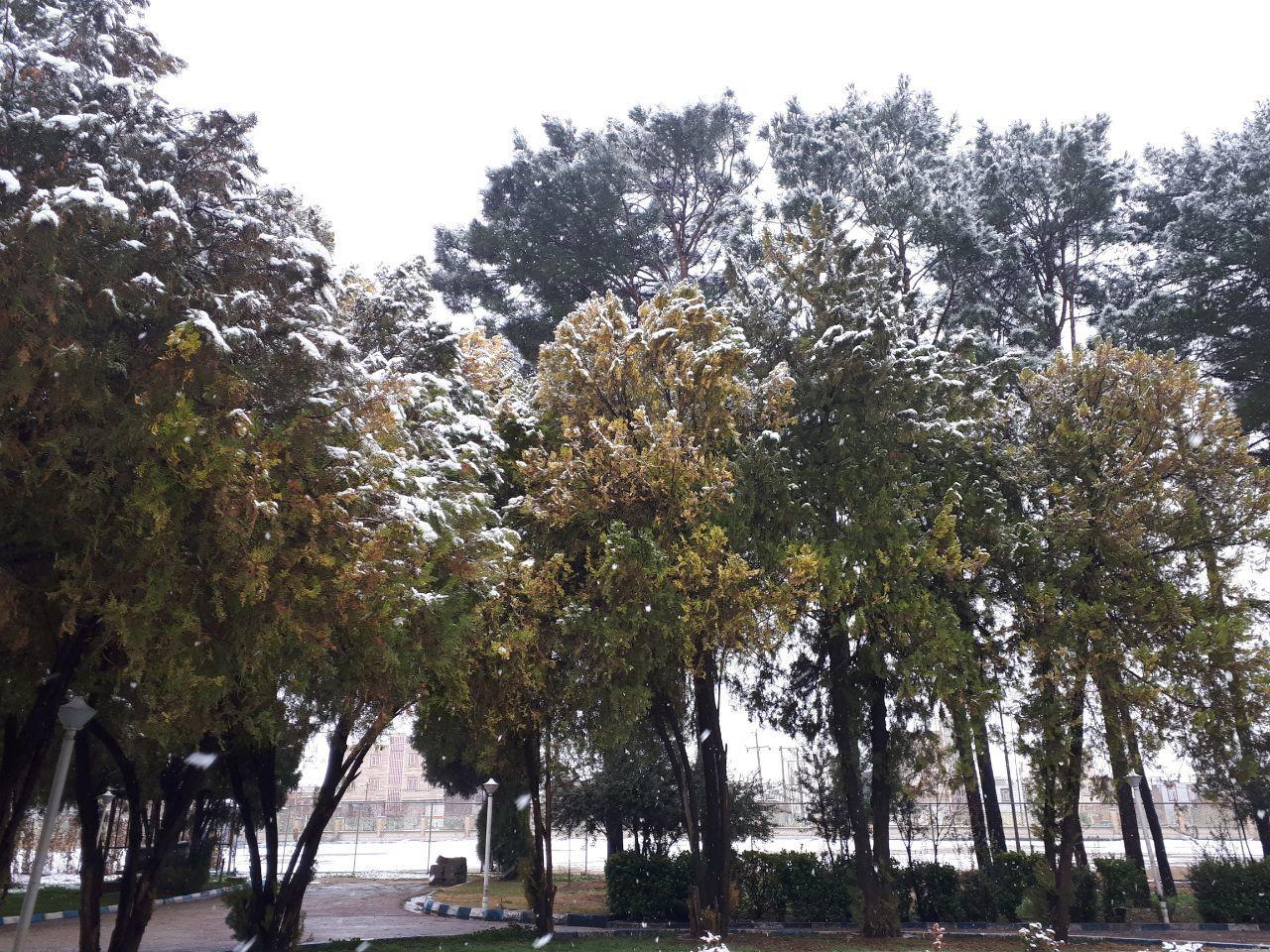بارش برف و تلاقی بهار و زمستان در خرم آباد
