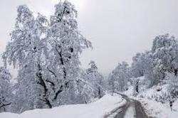 آمادهباش کامل در استان زنجان برای مواجهه با سرمای شدید