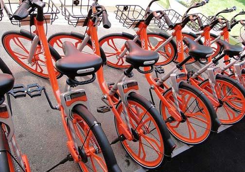 هوای پاک و چرخیدن چرخ دوچرخههای بی دود در شیراز /حس موفقیت، رشد جسمی، تناسب اندام