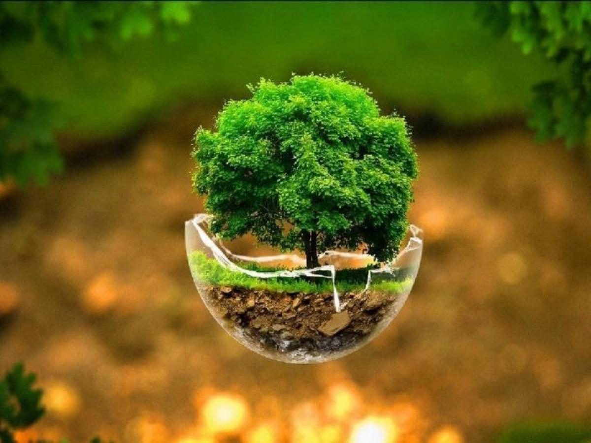 آموزش همگانی رویکردی اثربخش برای حفظ محیط زیست