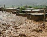 باشگاه خبرنگاران -ارسال کمکهای تخصصی دامپزشکی استان به مناطق سیل زده سیستان و بلوچستان