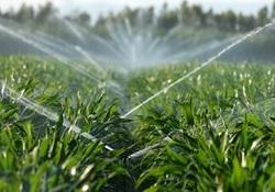 تجهیز ۷۲ درصد از زمینهای کشاورزی هرمزگان به ابیاری نوین