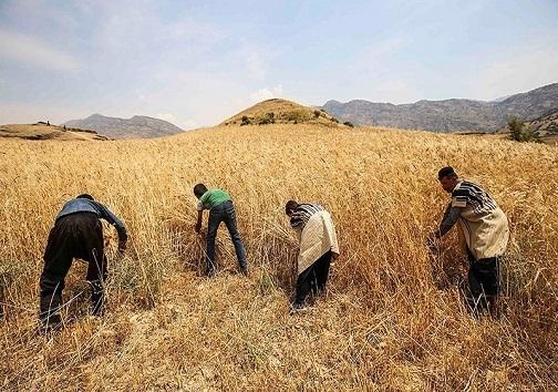سدهای خوزستان، سرریز از آب/بارش باران و رونق کشاورزی در استان