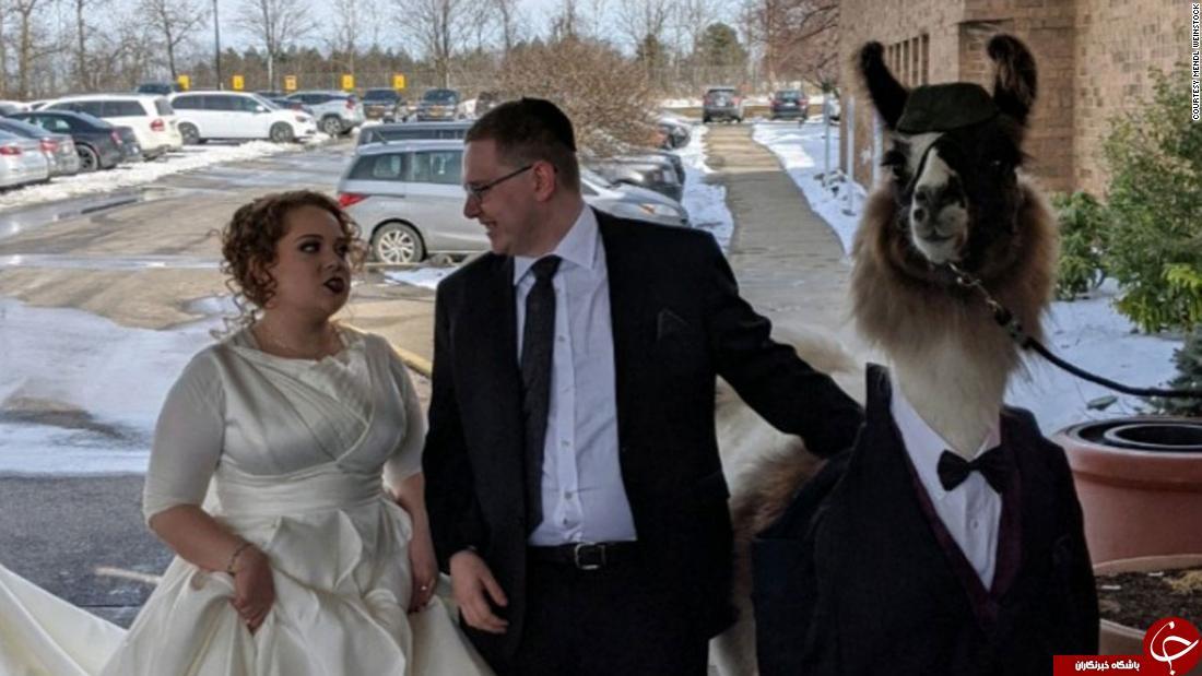سورپرایز عجیبی که عروس را ناراحت کرد!///