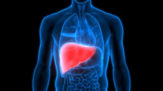 حقایقی جالب و شگفتانگیز درباره بدن شما