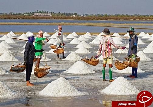نمک دریاچه ارومیه، گنج آشکار آذربایجان غربی