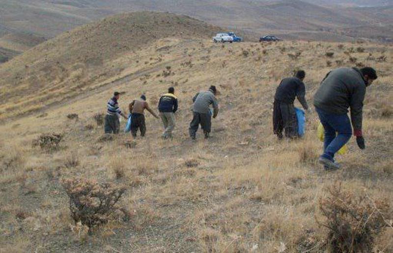 اجرای ۲۵۰ هکتار بذر پاشیی و بذر کاری در مراتع شهرستان اسدآباد