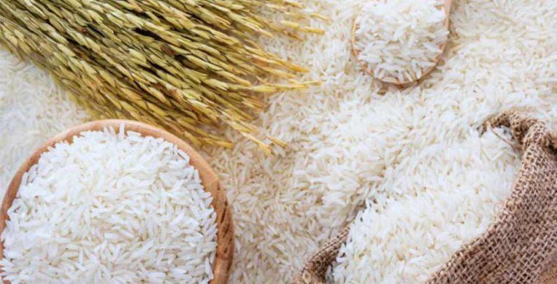 سودجویی سوداگران بازار برنج را برهم زد/کمبود واردات بهانه ای برای افزایش قیمت برنج/ نیازی به واردات برنج نداریم