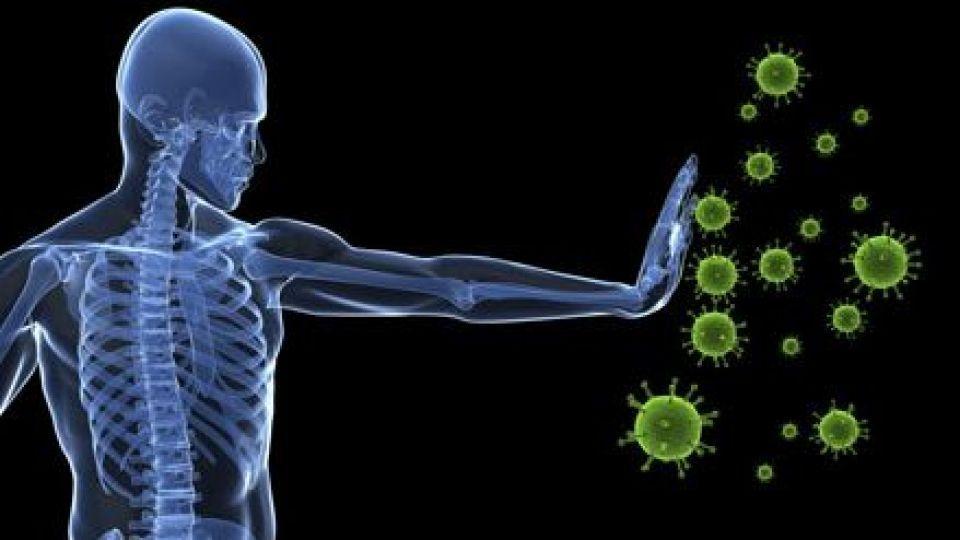 سیستم ایمنی بالا گامی به سوی سلامتی
