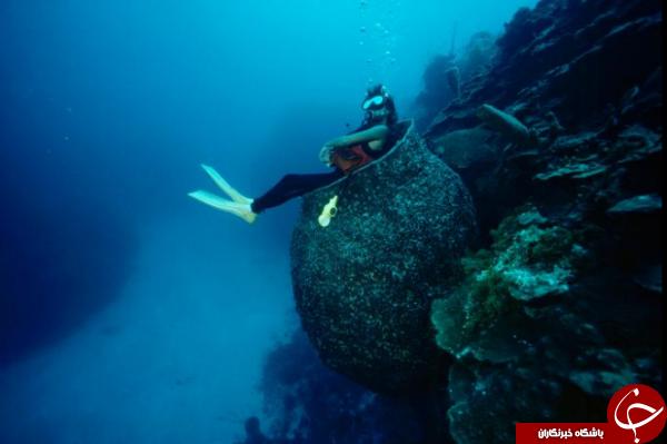 غواصی در آبهای جزیره کیمن؛ عکس منتخب نشنال جئوگرافیک