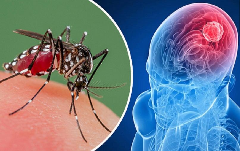 کرونا کمترین میزان مرگ را در میان ویروسهای خطرناک دارد