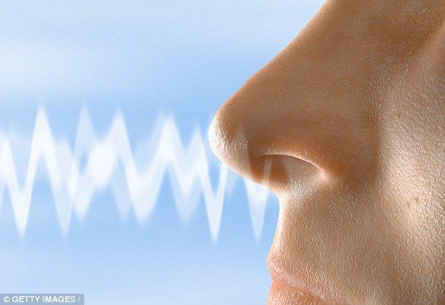 نشانهای از پیشبینی زمان مرگ با کاهش حس بویایی