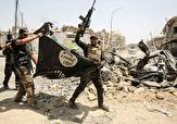 باشگاه خبرنگاران -سرنوشت نامعلوم ۴۵۰۰۰ کودک داعشی/ آینده سیاهی که والدین تروریست برای فرزندانشان رقم زدند
