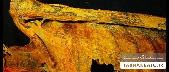 نماد یاغی گری در تاریخ از آن کیست؟ + تصاویر