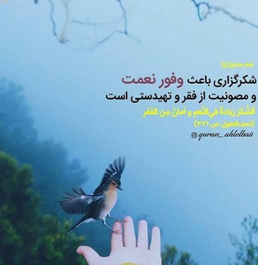 حدیثی از امام صادق(ع) در خصوص شکرگزاری +تصویرنوشته