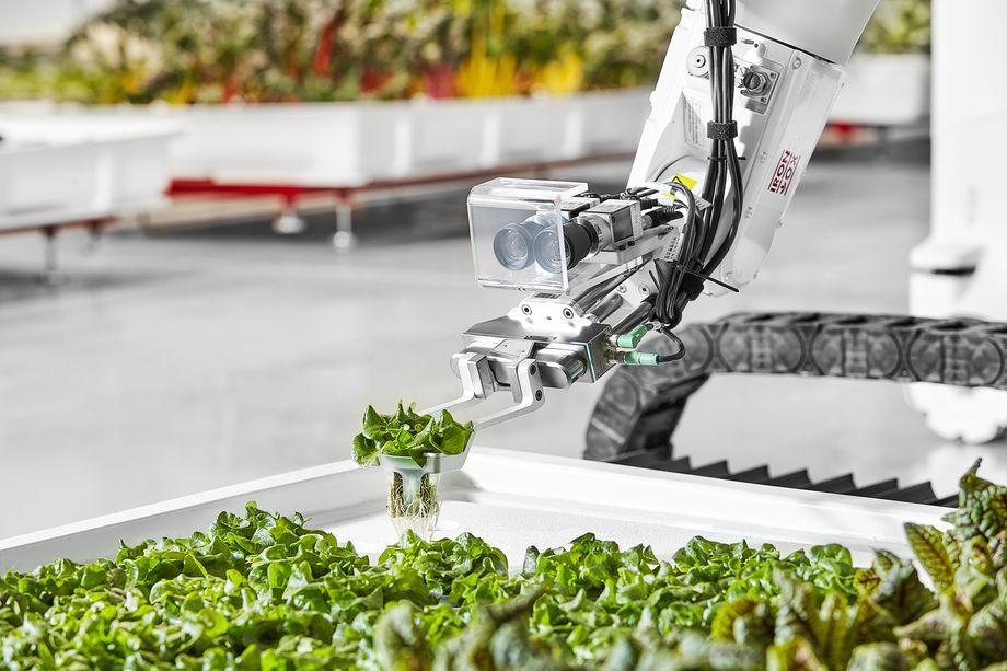 رباتها وارد عرصه کشاورزی میشوند+عکس