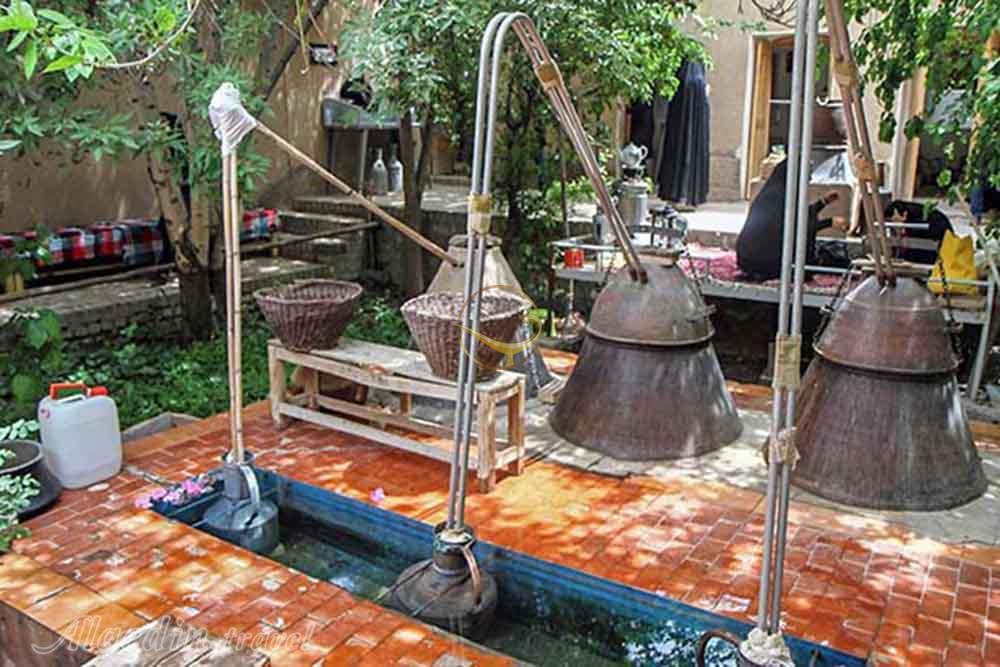 اردیبهشت شیراز، عطر خوش بهار نارنج