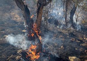 افزایش احتمال آتشسوزی در عرصههای منابع طبیعی گلستان/کانونهای بحران شناسایی شد