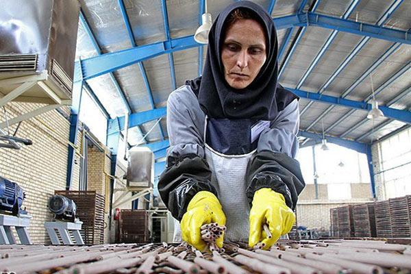 نکات کلیدی نقش زنان در تحقق رونق تولید/ توسعه مشاغل خانگی اولین گام برای رسیدن شعار سال