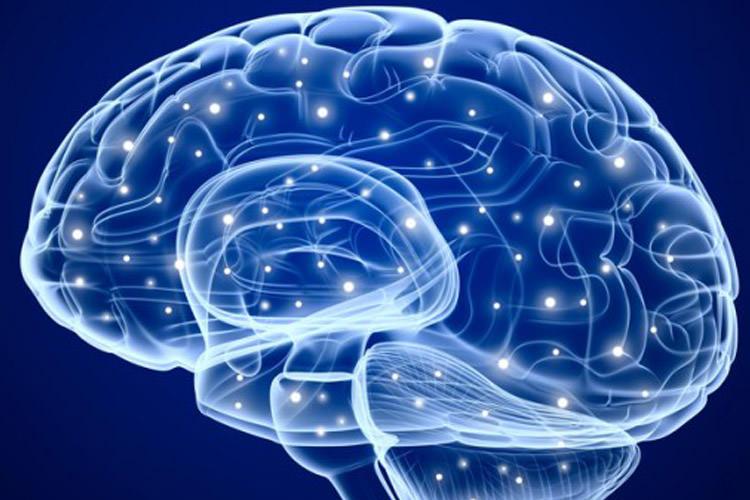 ۶ راهکار اصلی برای داشتن حافظهای بهتر/ لاغر شدن با نوشابههای رژیمی را فراموش کنید/  با ویتامین c استرس مزمن را کنترل کنید/ وقتی قد بلند دردسر ساز میشود