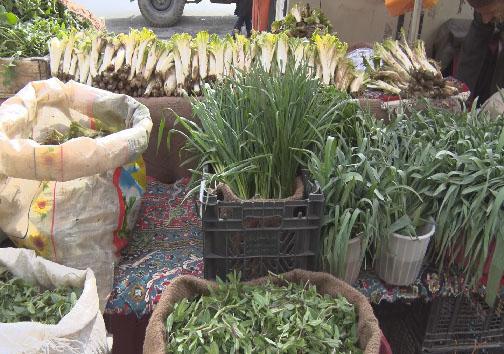 فصل بهار و چیدن سفرههایی سبز مملو از عطر طبیعت
