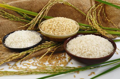 گزارش برنج//تبدیل خانه ها به انبارهای آذوقه بر نوسان قیمت برنج دامن زد/نبود نظارت دستگاه های ذی ربط عامل اصلی اختلاف صد درصدی قیمت از مزرعه تا سفره