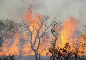 رعد و برق محدوده روستای چکک کوهمره نودان کازرون را به آتش کشید/آتش مهار شد