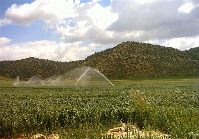 تجهیز بیش از ۱۰ هزار هکتار از اراضی سیرجان به سیستم آبیاری نوین