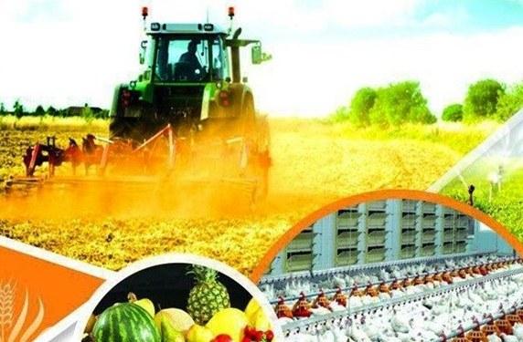تجهیز ۲۲۷ هزار هکتار از اراضی کشاورزی کشور به آبیاری تحت فشار