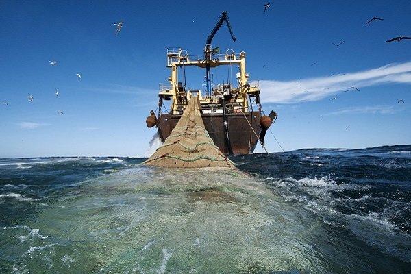 صیادان کنارک خواستار توقیف کشتی های ترال در آب های این شهرستان شد