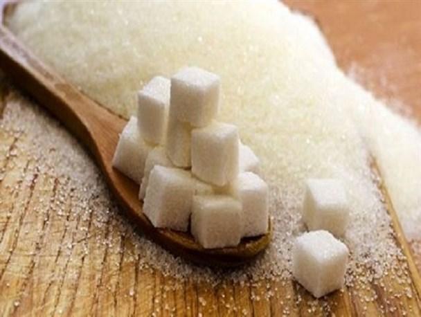 آغاز تولید شکر در جوین