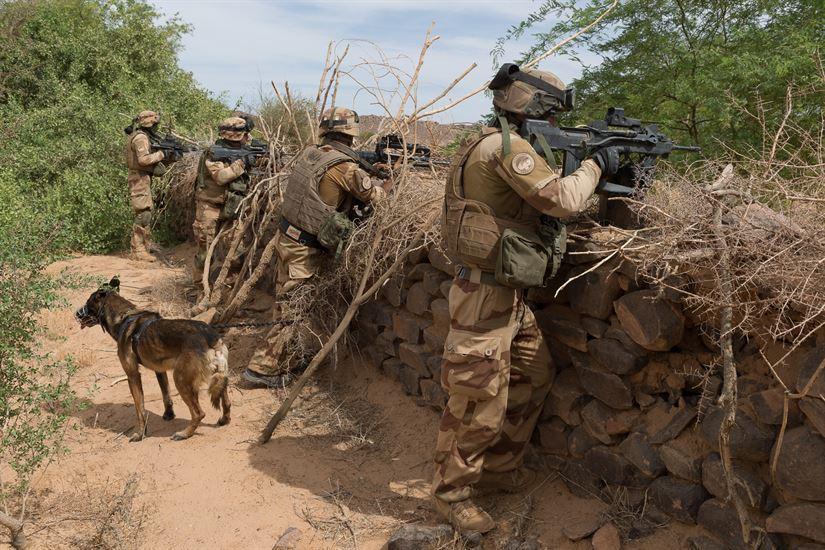 فرانسه به آموزش نظامی نیروهای عراقی ادامه میدهد
