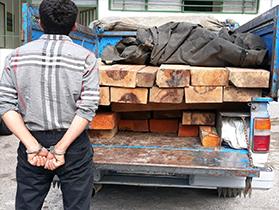کشف یک محموله چوب قاچاق در رودبار