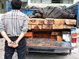 باشگاه خبرنگاران -کشف یک محموله چوب قاچاق در رودبار