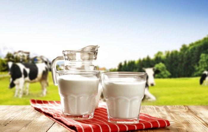 قیمت انواع شیر در بازار