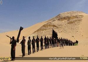 هلاکت ۴۷ تروریست در صحرای سینا