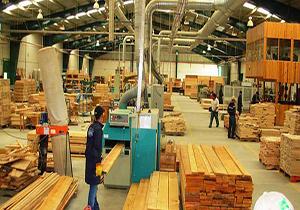 اجازه صدور مجوز جدید برای صنایع چوب و پالت سازی را نمیدهیم/ راه اندازی بزرگترین کارخانههای خودکار پالت سازی کشور در تالش